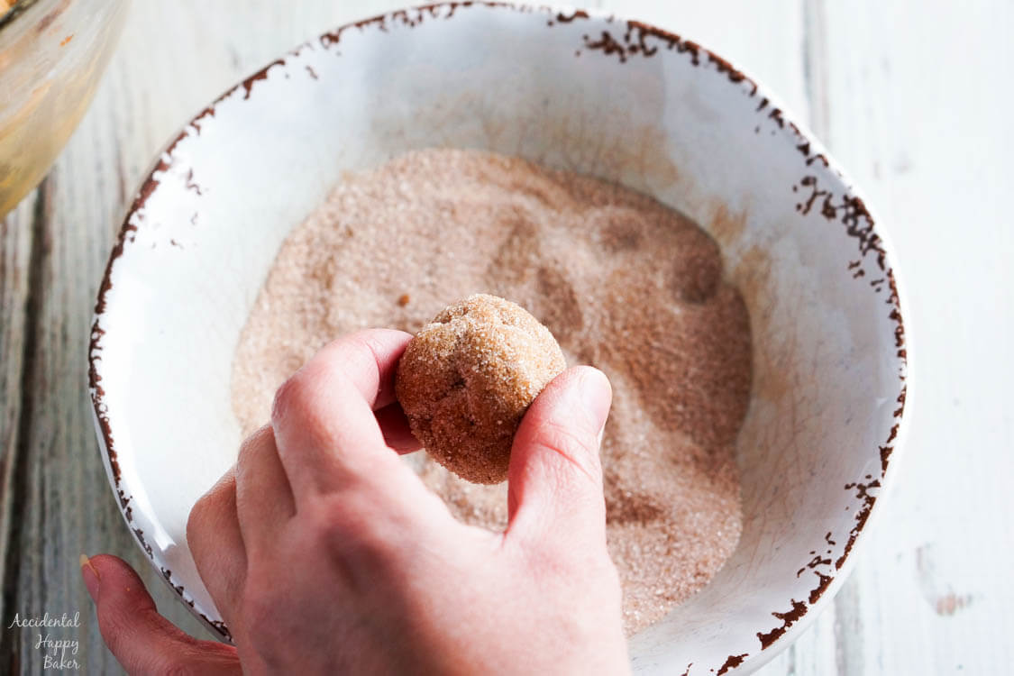 A ball of pumpkin gingersnap cookie dough rolled in cinnamon sugar.