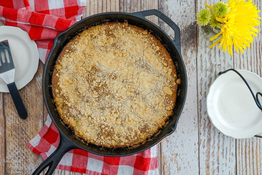 A fresh baked Molasses Skillet Cake in a cast iron skillet on top of a checked red towel.