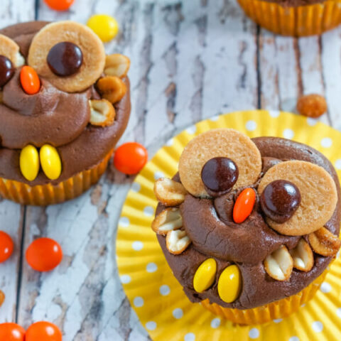 Peanut Butter Chocolate Owl Cupcakes