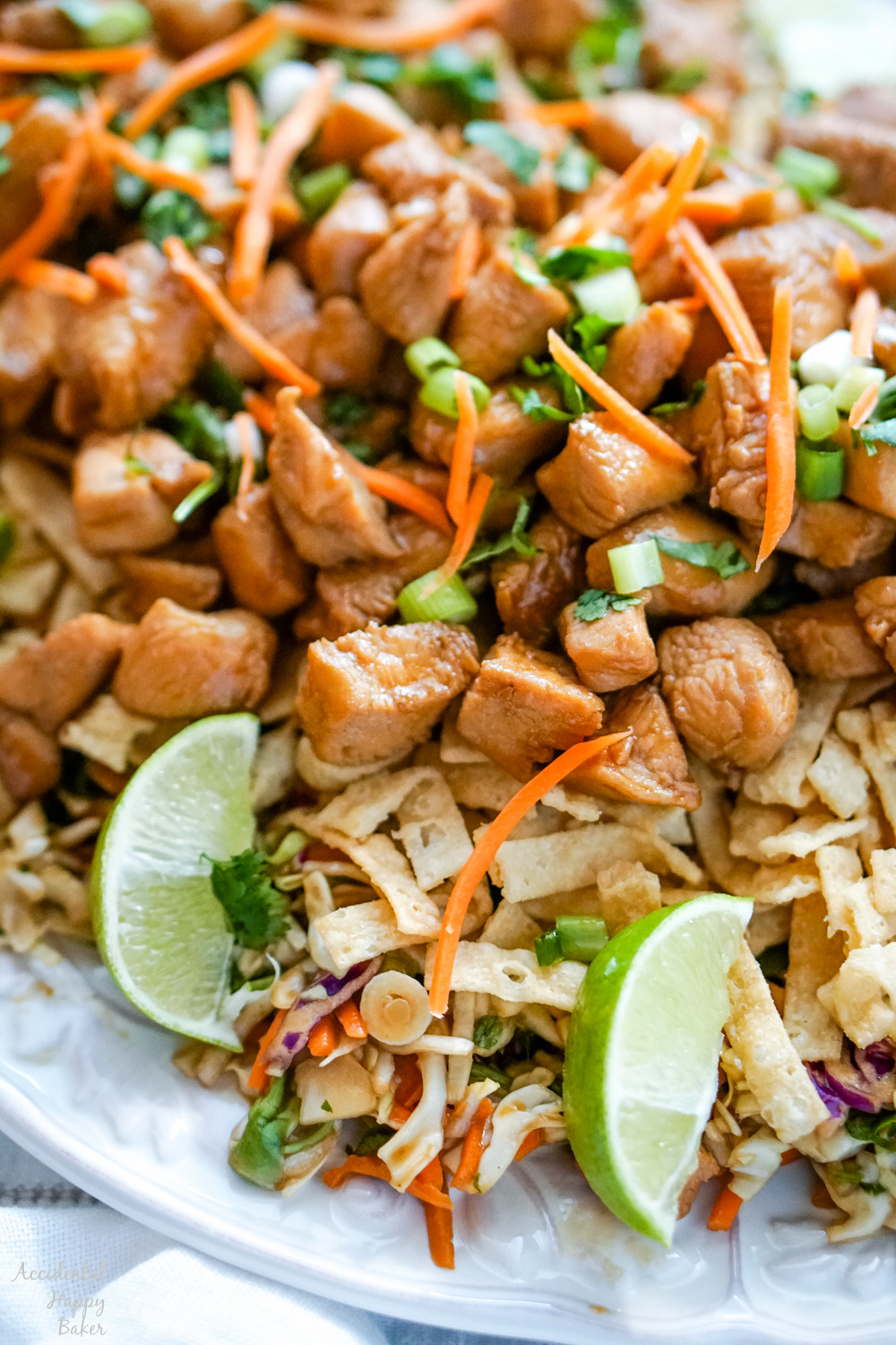 A close up image that shows the components of the finished Wonton Chicken Taco Salad.